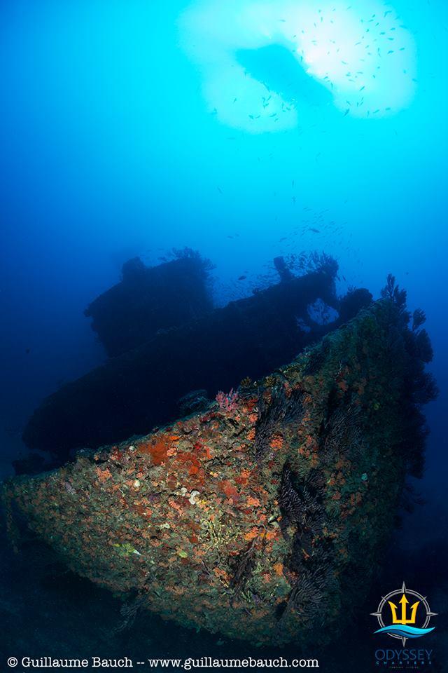 Jim Atria Shipwreck