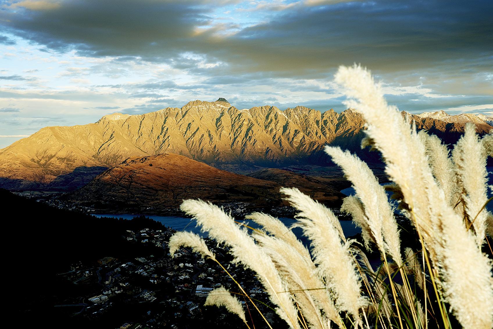 New-Zealand-Travels-Photography-Mark-Sullivan-Bradley.jpg
