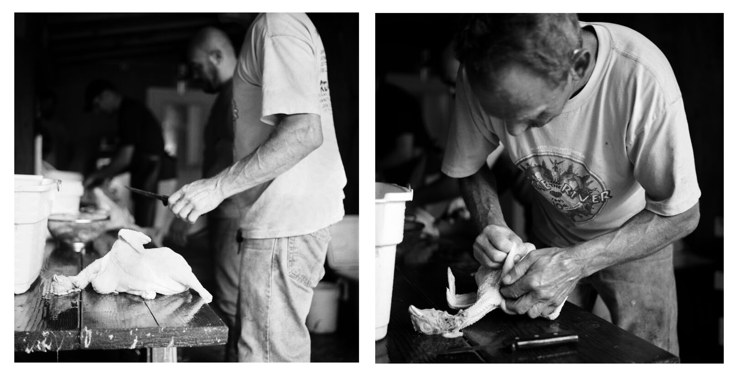 Greg with Chicken, 2015 - These are portraits of my good friend Greg. He has a farm with a huge garden and raises his own animals for meat. He has some beautifully worn hands, if I've ever seen some. I'll have to photograph them again soon.These images were made the day of a chicken slaughter. The one on the left is the moment right before the boys had a race to see who could clean a chicken the fastest and tidiest. His hand paused with a knife, ready. The one on the right hand side is in the heat of battle. Both were taken with my Rolleiflex 3.5 with HP5.
