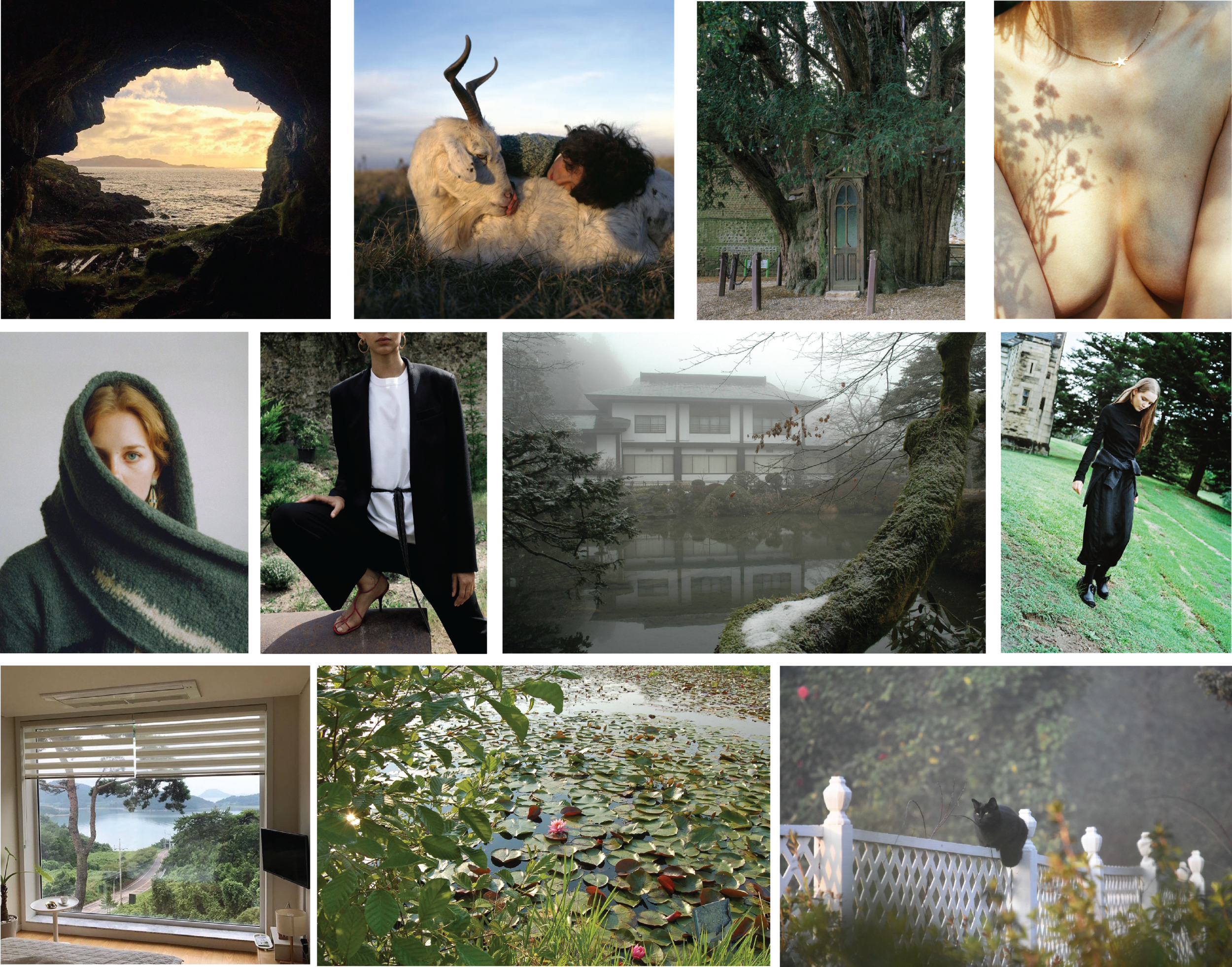 Collage 2 - Green.png