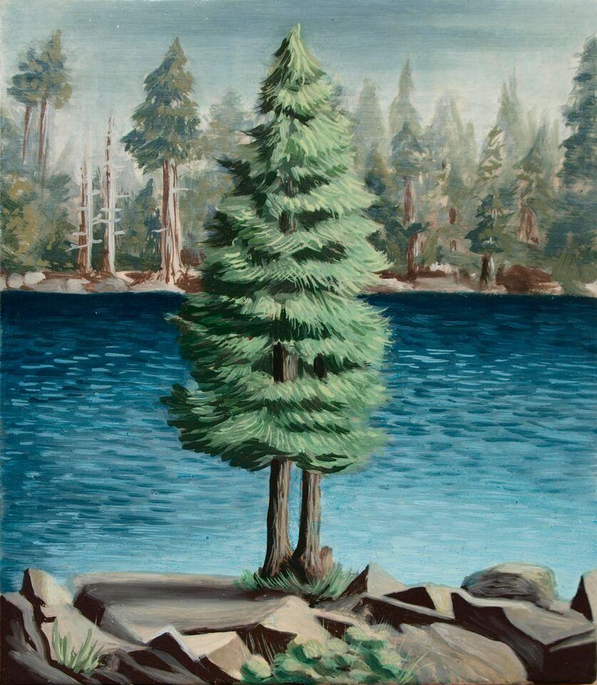 Long Lake Ponderosa Pine.jpg