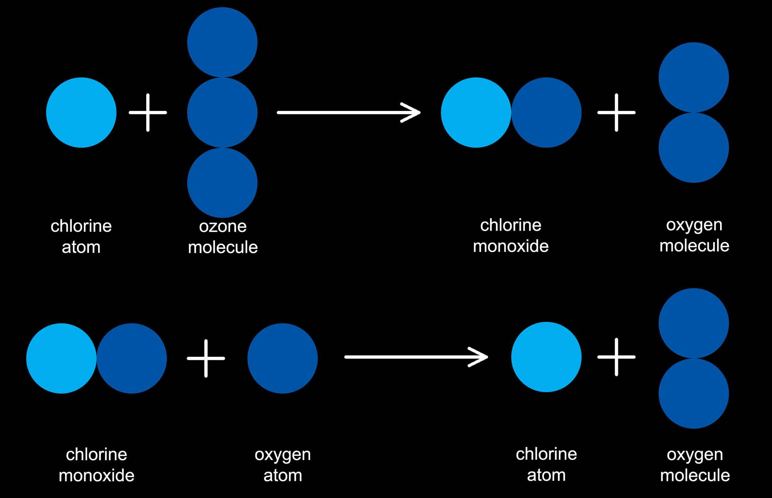 ozone destruction catalyzed by chlorine