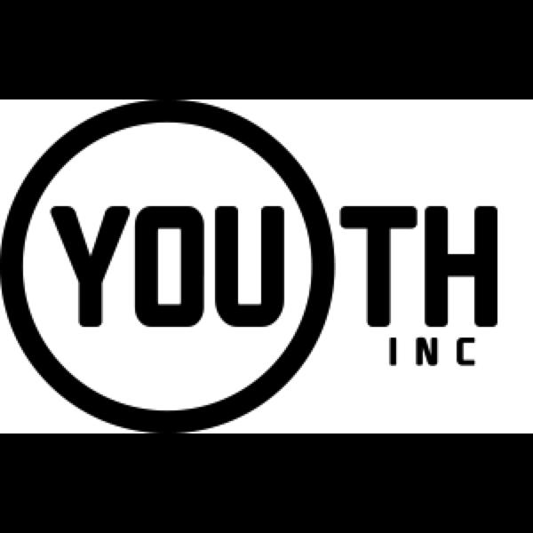 Youth INC: Website link