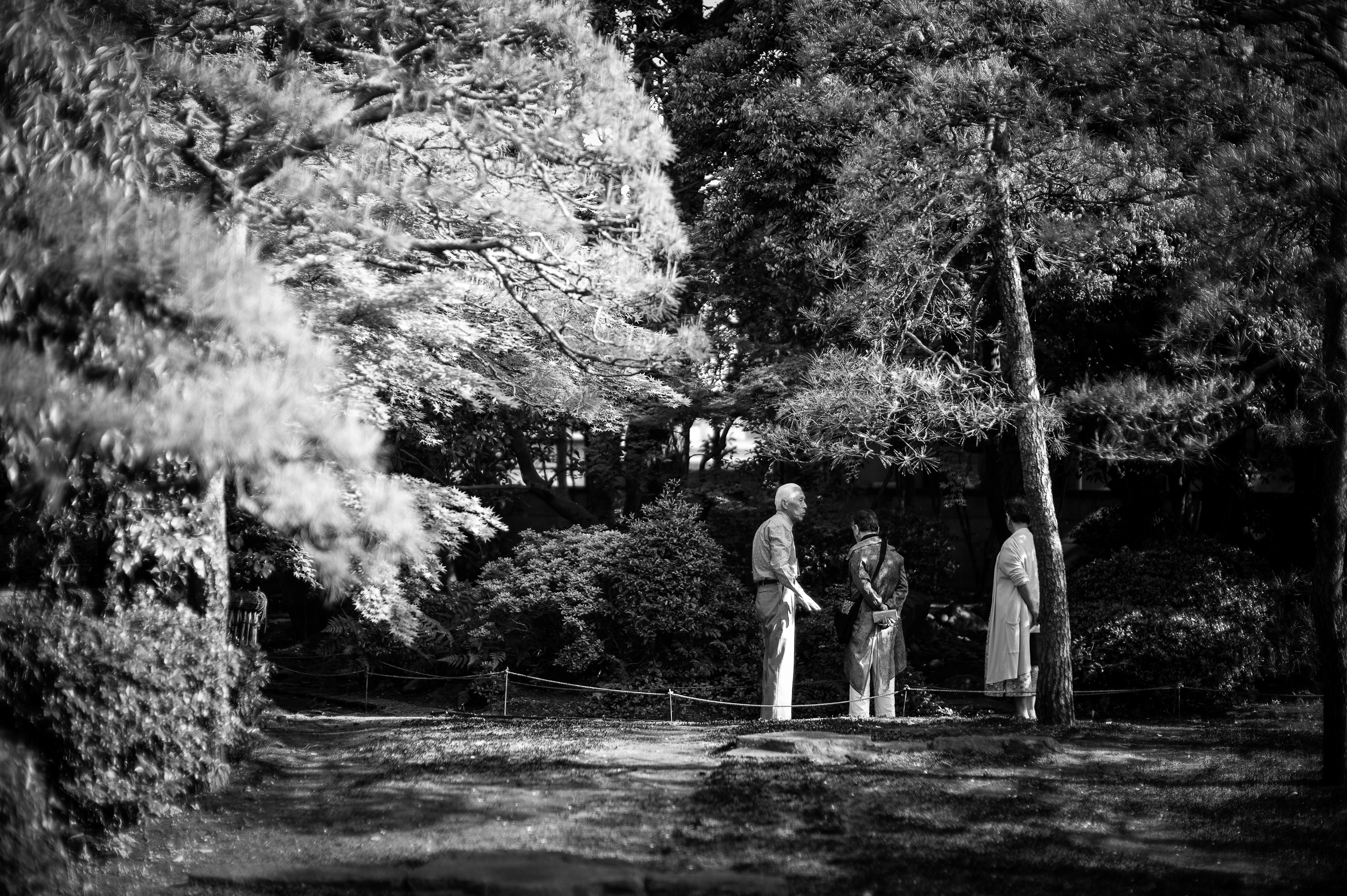 The Japanese garden of Inomata Garden