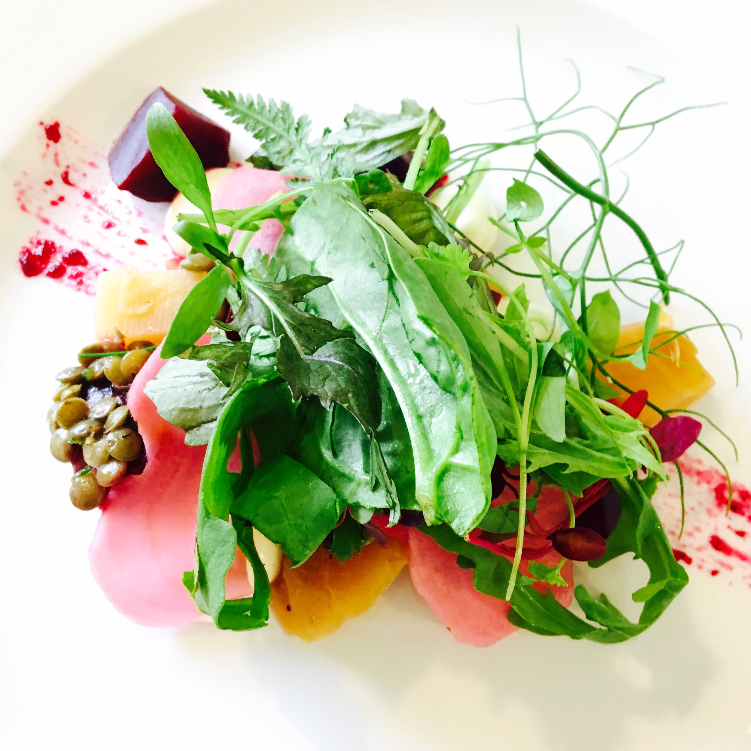Roasted and pickled beetroot, ricotta salata, puy lentils and foraged leaves for a wedding starter.