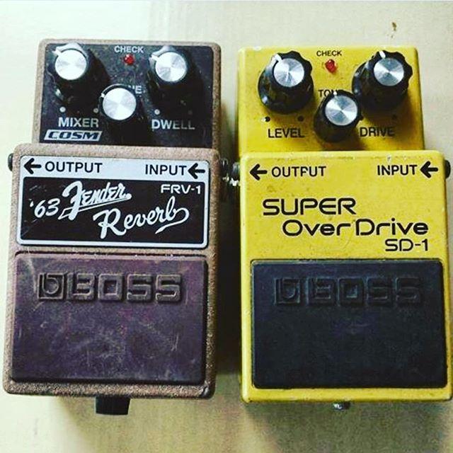 www.shawnsleepsnaked.com  #boss #guitar #pedal #distortion #reverb #music