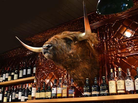 Bull&Castle Seamus.jpg