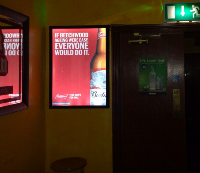 C17.Budweiser.Galway.JPG