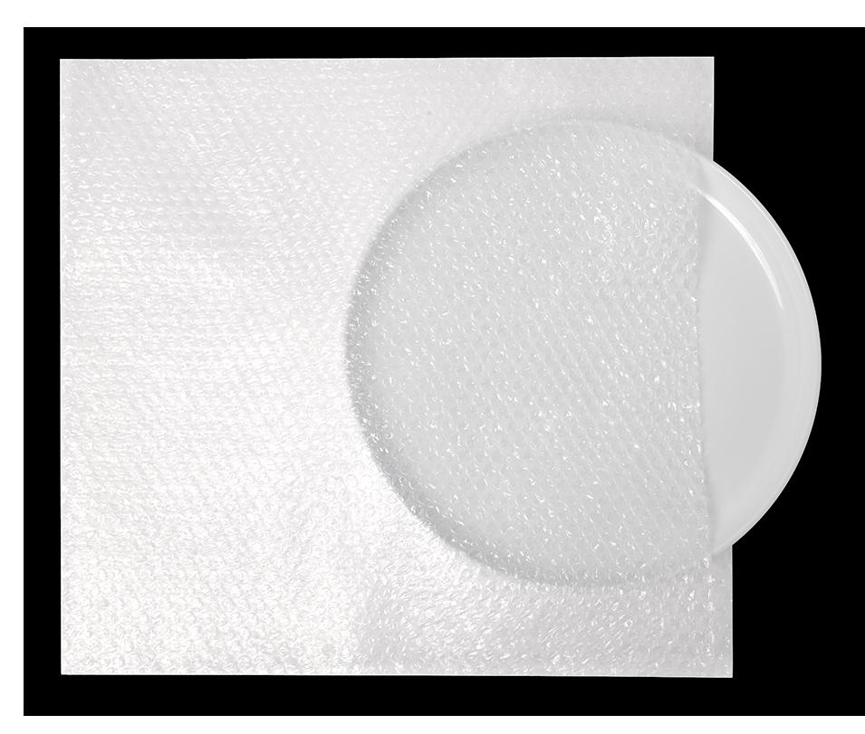Bubble Cushion Bag_Plate_Overhead.png
