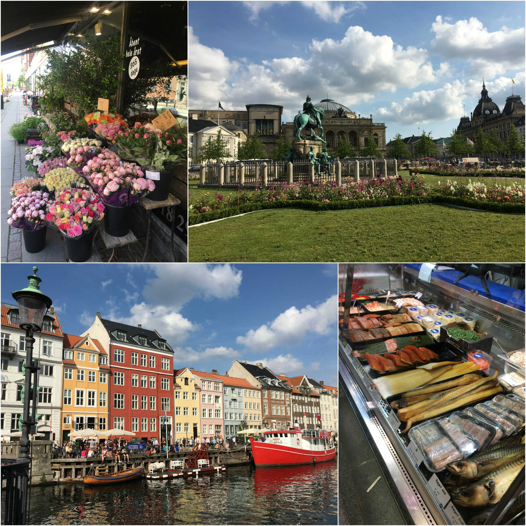 Moments from Copenhagen: flowers, colorful houses, and lots of smoked fish. Not too shabby!