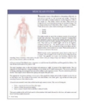Fitness Training Manual Page