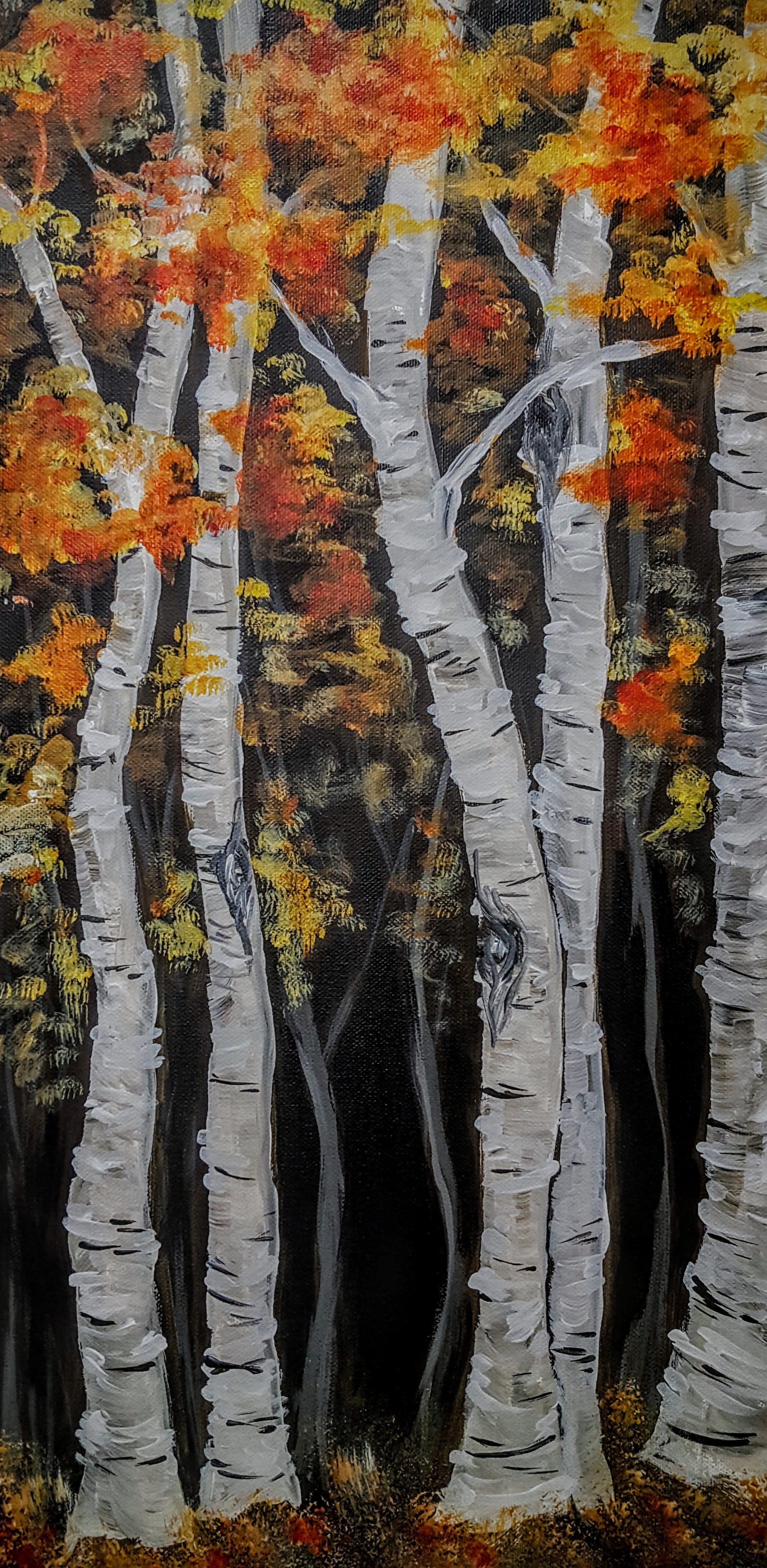 Majestic Birch.jpg