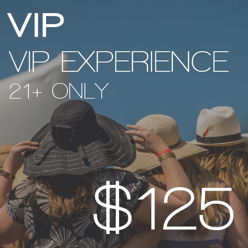 Ticket 2018 VIP.jpg