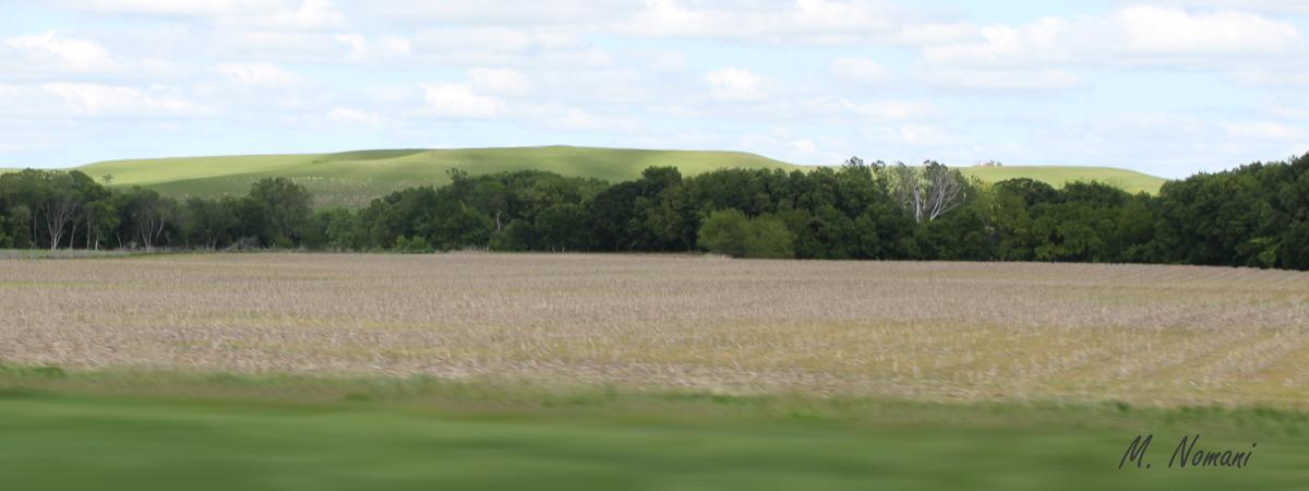 Flint Hills - Green Distance.jpg