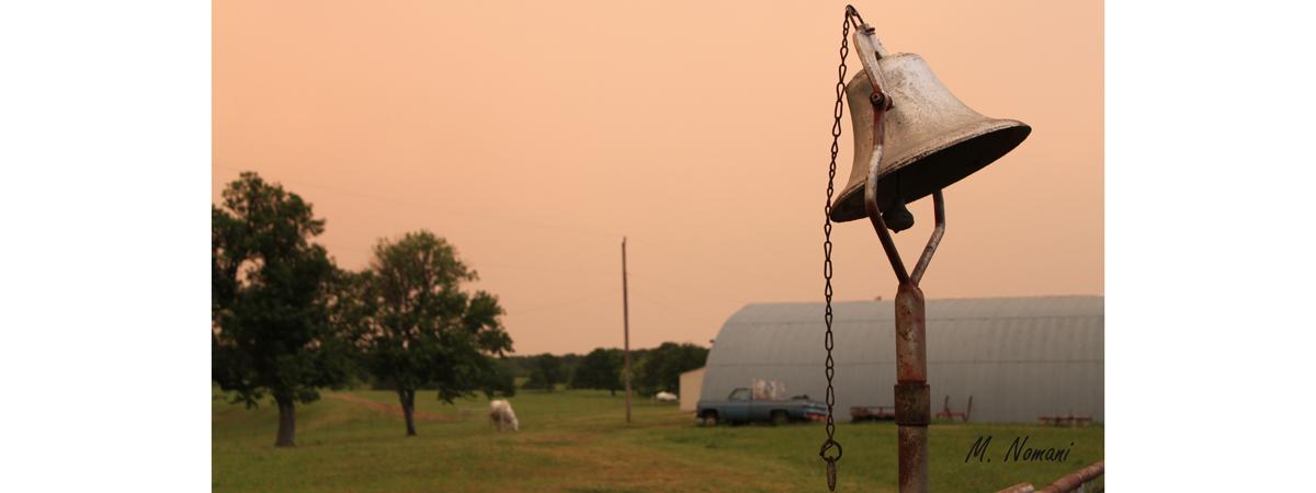 Lazy S Ranch - Bell.jpg