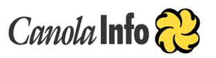 circa 2002-2006