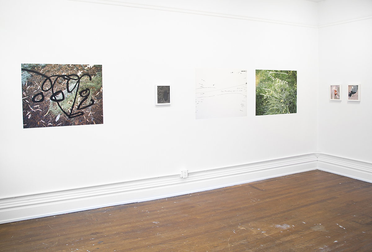 VERSA Gallery