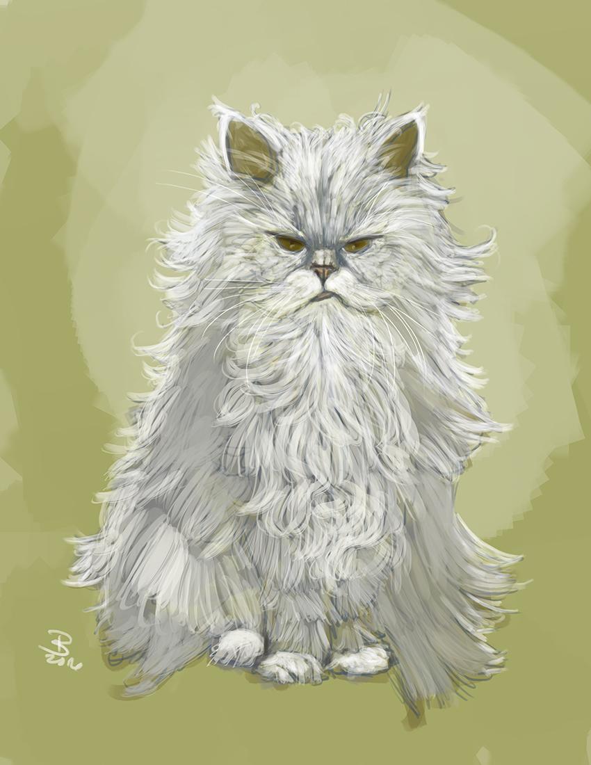 DSP-Snowbeard-psmith.jpg