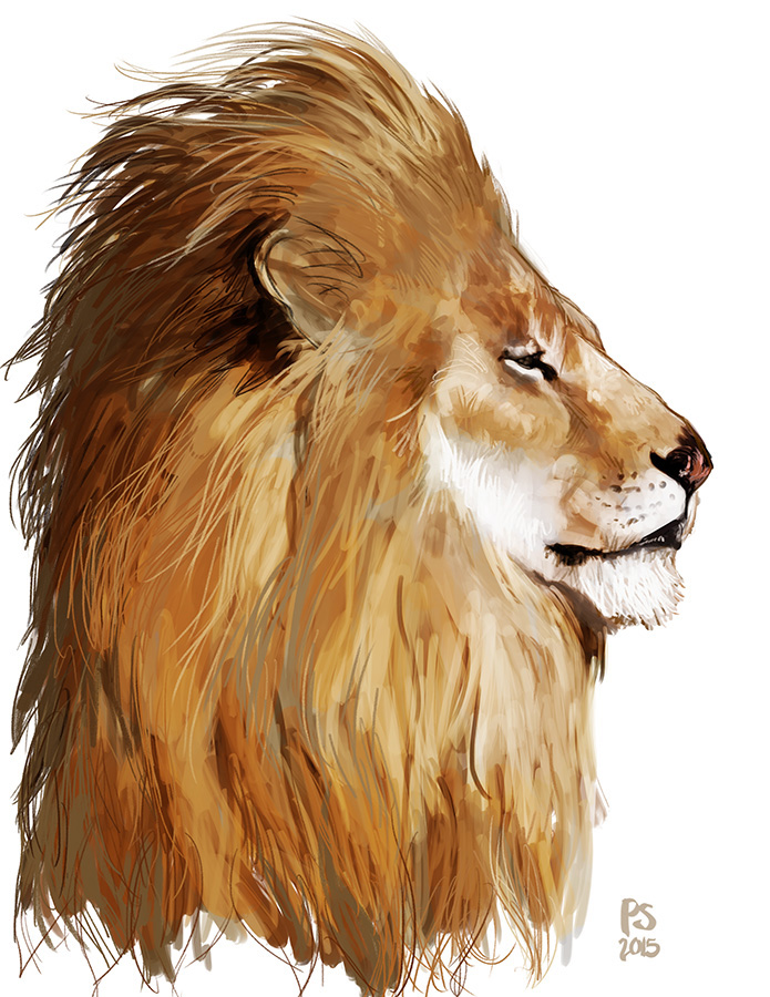 LionKingProfile-psmith.jpg