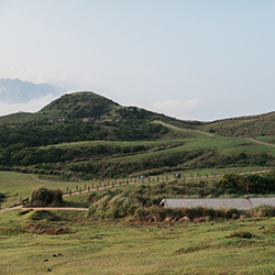 Qingtiangang