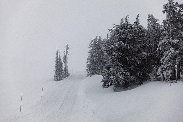A blizzard rolls in near Timberline Lodge.  A true North Pole feeling.⠀⠀