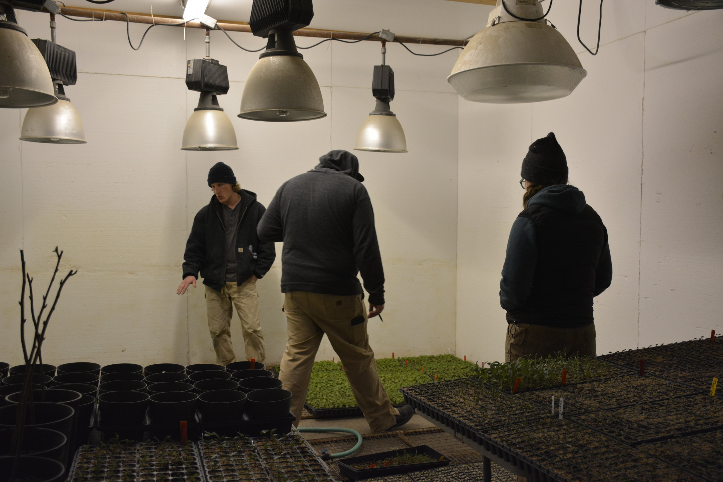 Mike showing Hannah and Tommy the germination room