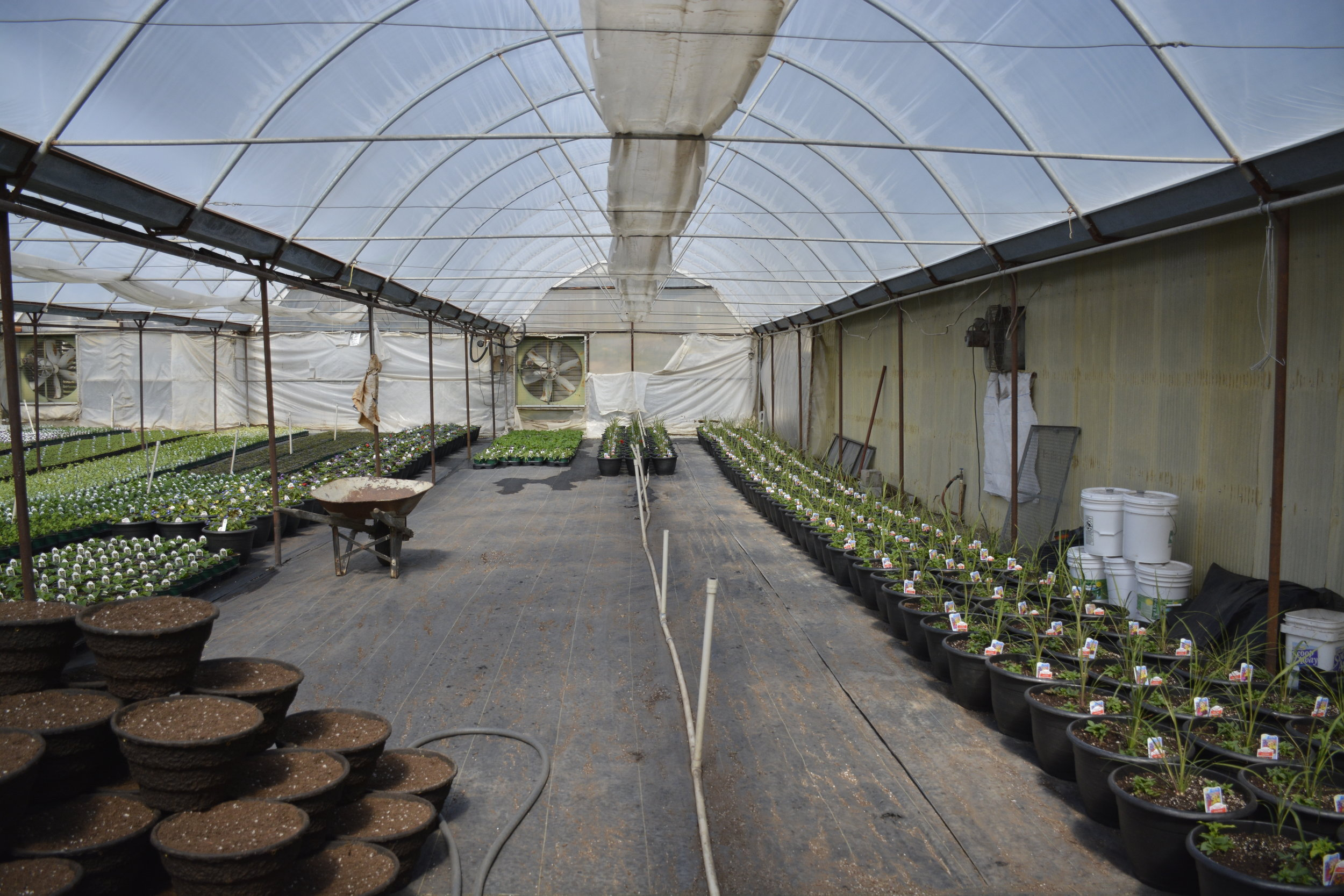 Warm Springs greenhouse tour