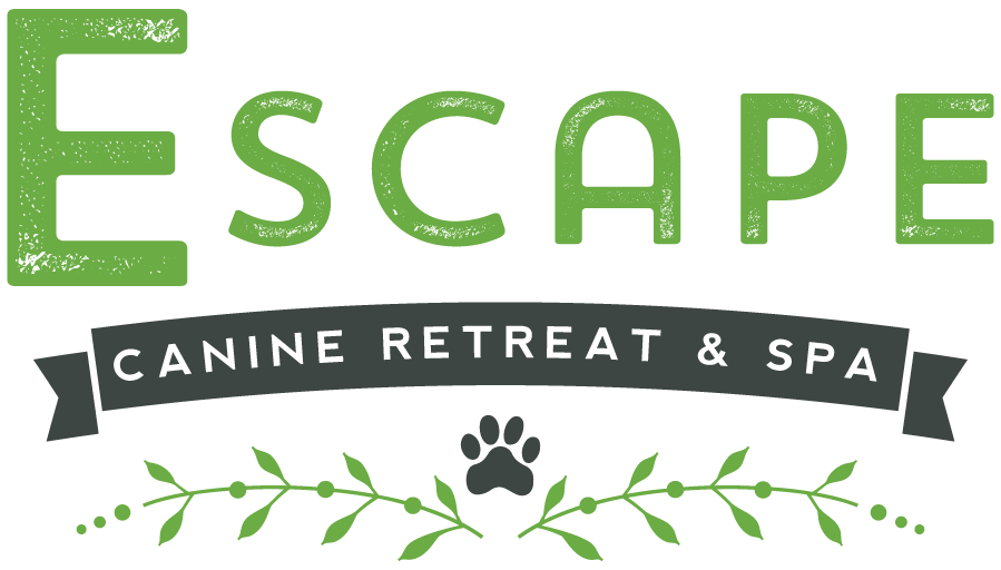 2015-ESCAPE-LOGO-OUTLINES.png