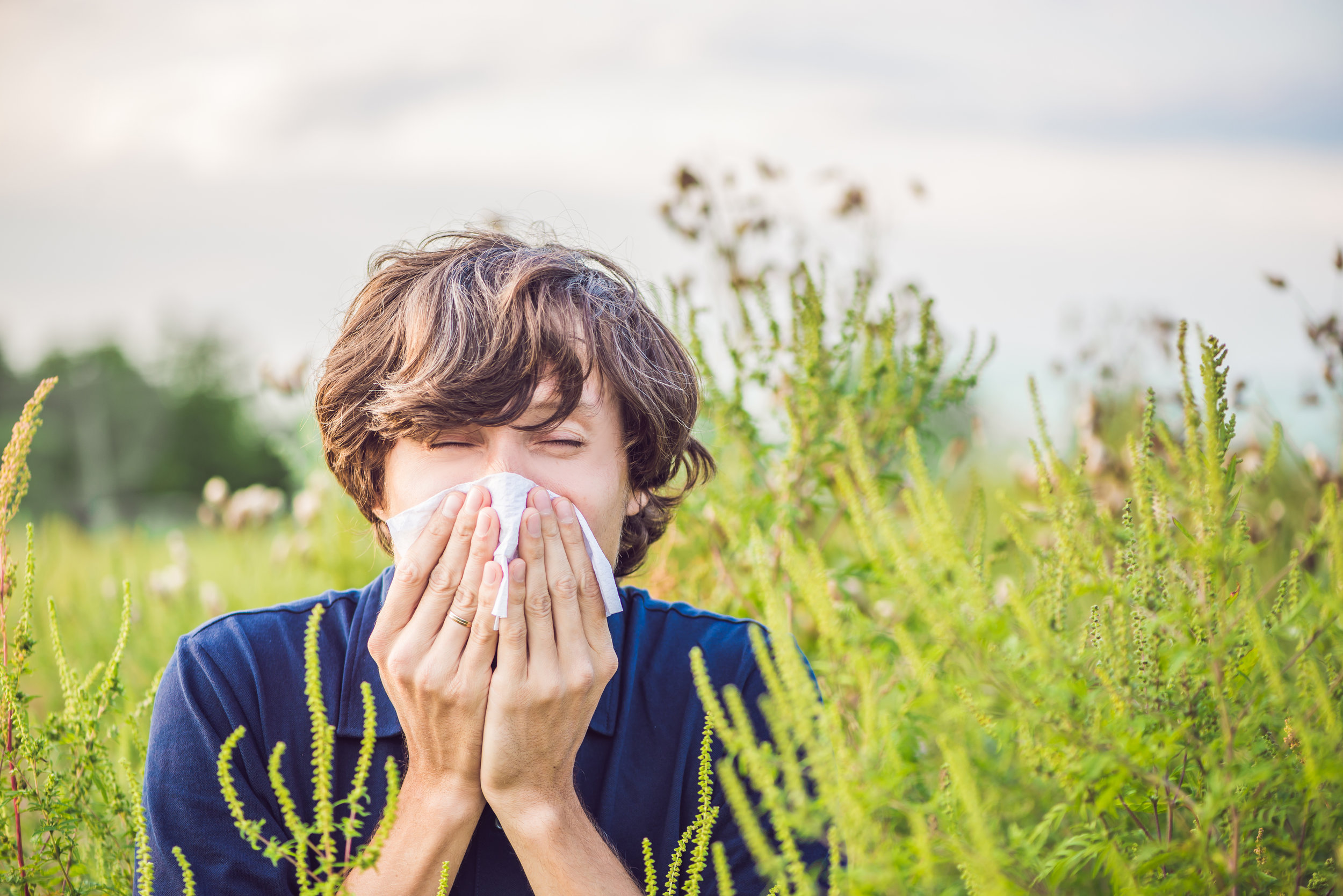 Are you suffering from seasonal allergies? - Here are 9 Natural remedies suggestions that might give you some relief