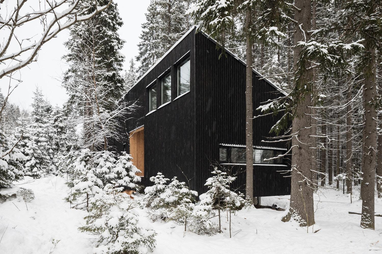 house-in-roschino-ab-chvoya-1.jpg