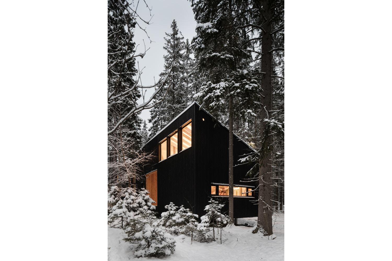 house-in-roschino-ab-chvoya-2.jpg
