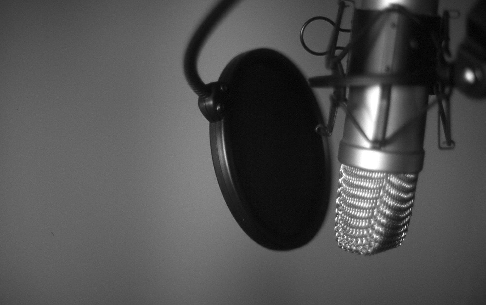 nice-mic-1426648.jpg
