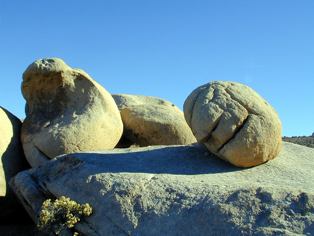 Is that a rock or a giant egg?