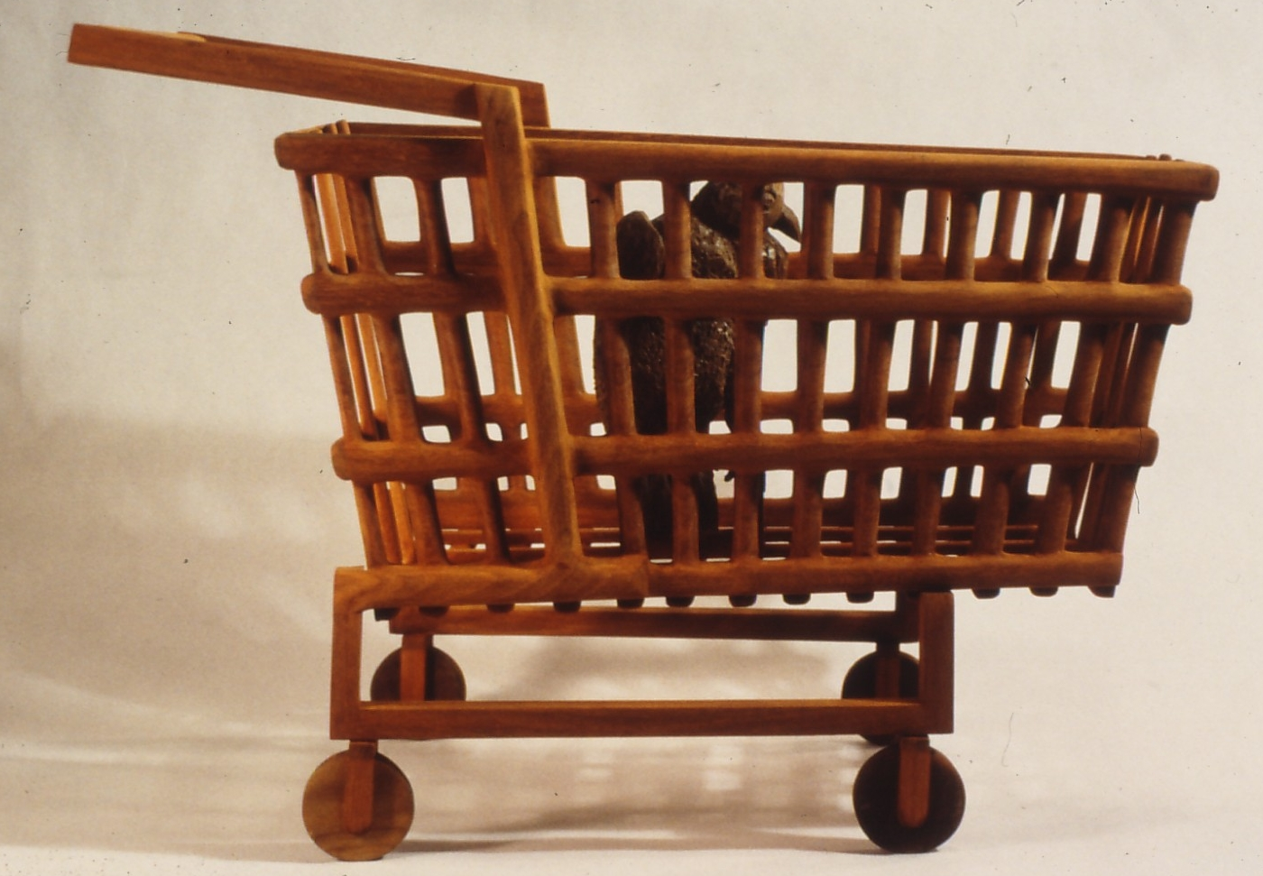 9.Audubon Shopping cart.jpg