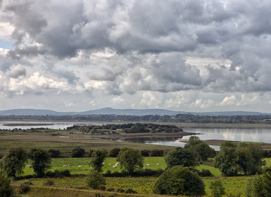 River Shannon, August Afternoon