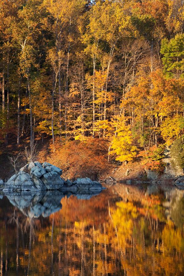 Widewater, November Afternoon