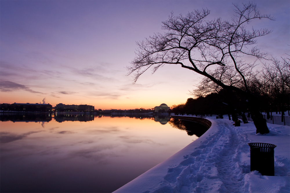 Jefferson Memorial, December Morning