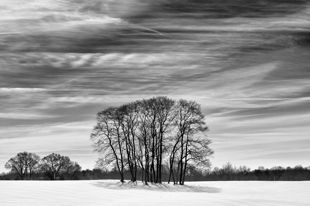 Warrenton, VA, February Morning