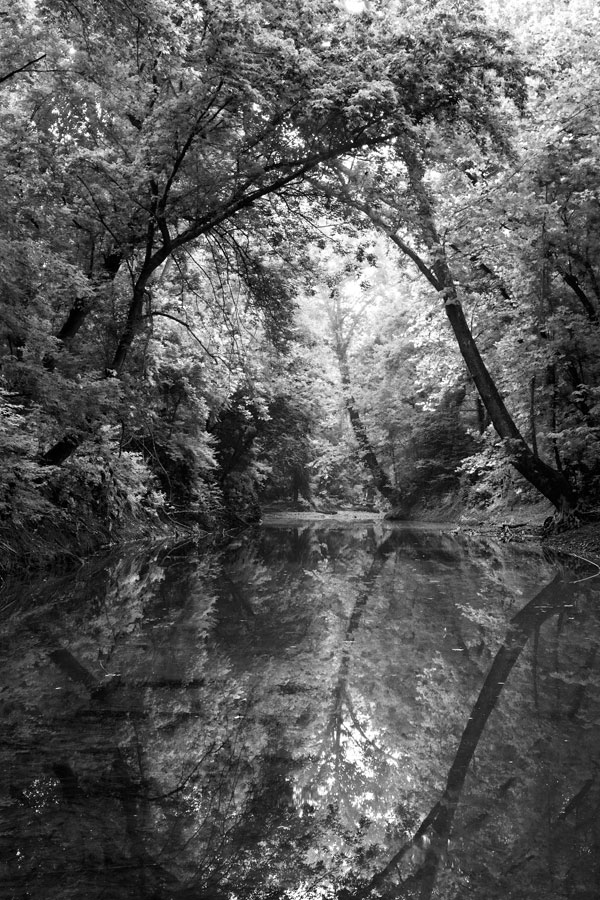 090725Potomac-River-12-PS-BW-PN.jpg