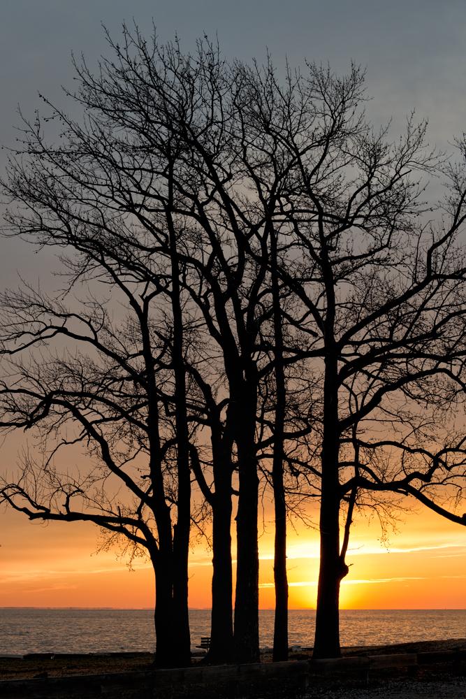 Fort Smallwood, January Sunrise