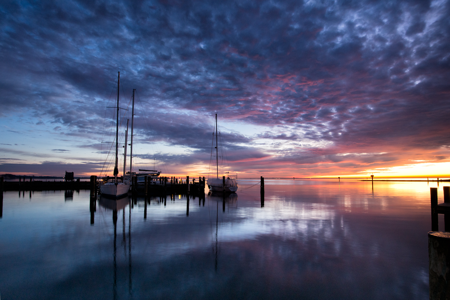 Annapolis, December Morning, Focal Point 2015