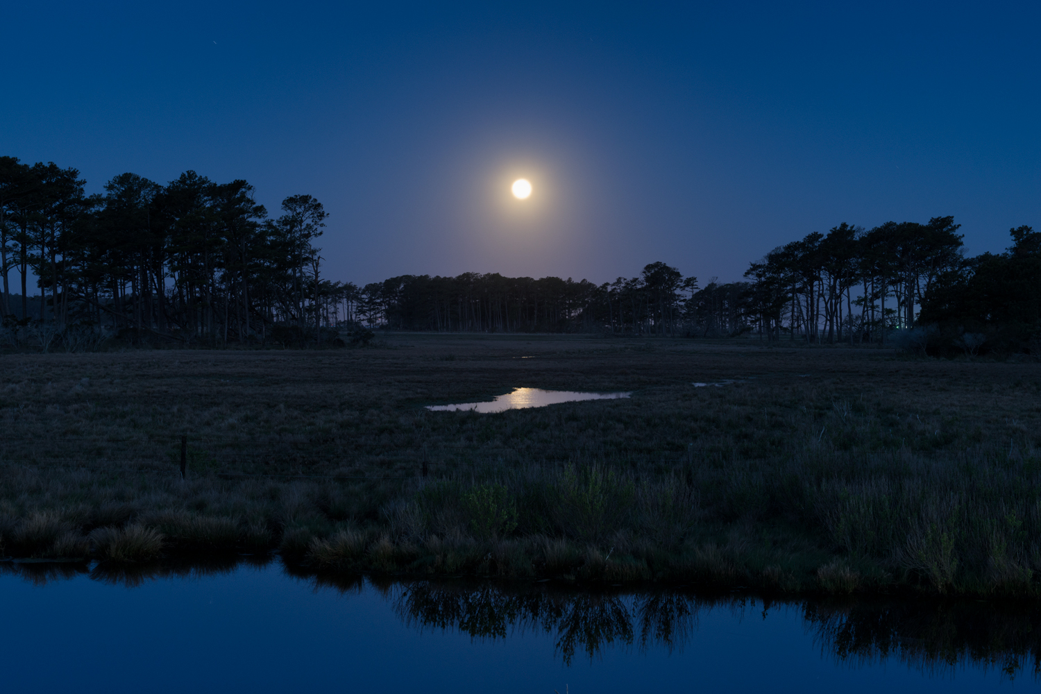 Assateague Island, May Moonset