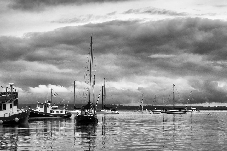 Langley Harbor, July Morning