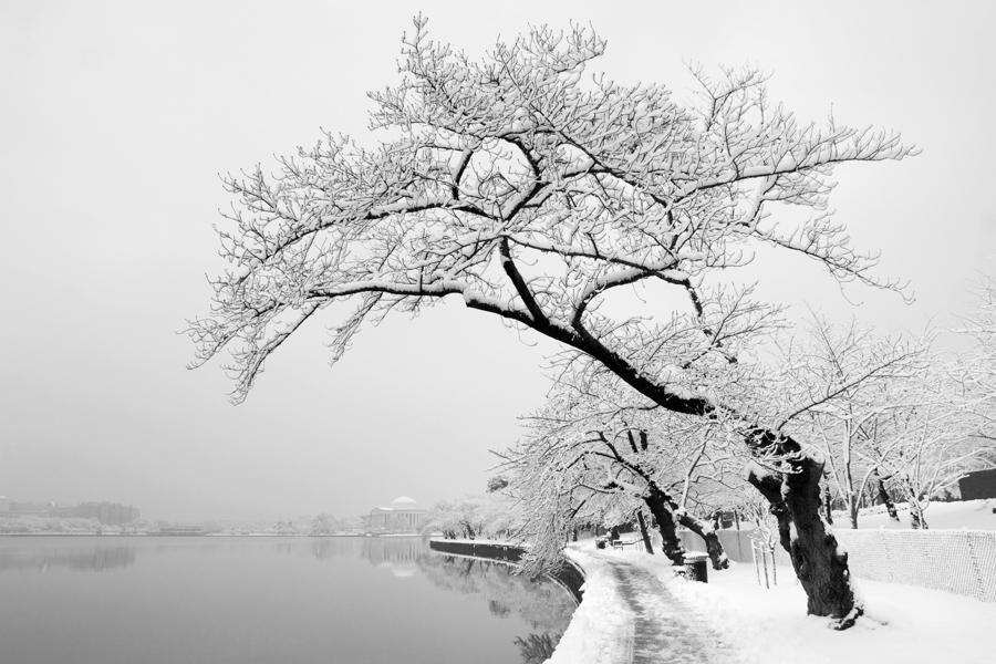 Jefferson Memorial, February Morning, Artful Photography, 2010