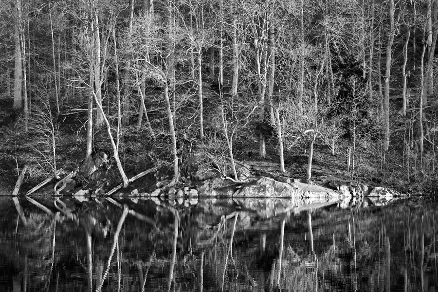 Widewater, April Morning, American Landscapes 2009