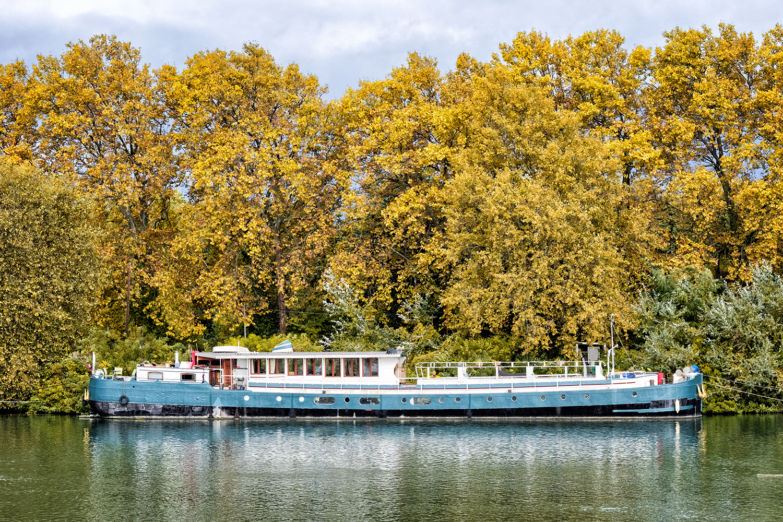 Rhone River, Avignon, October Morning