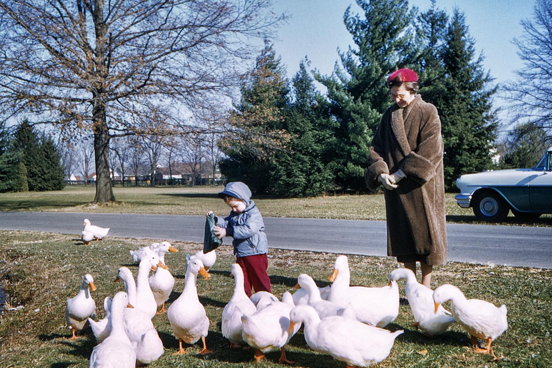 Sally and Anne feeding the ducks at Druid Ridge Cemetery