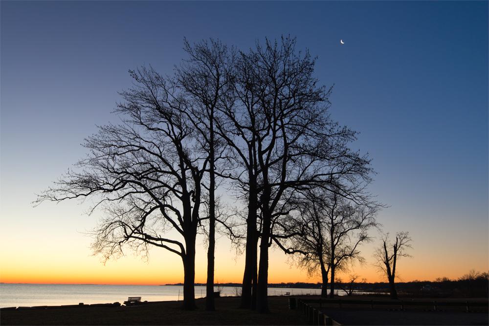 Fort Smallwood, December Morning