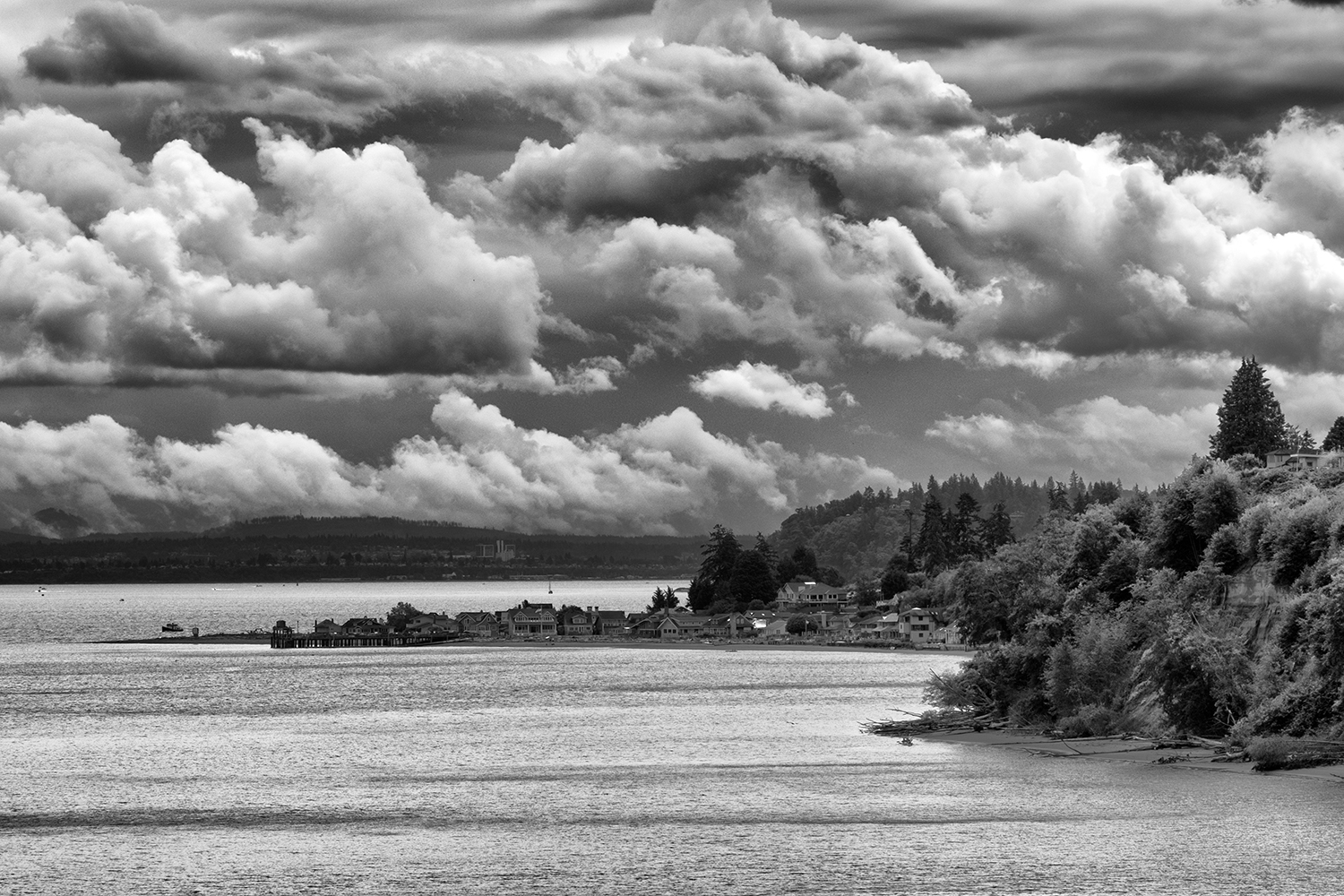 Whidbey Island, July Morning, American Landscapes, 2017