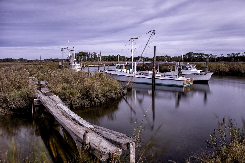 Tedious Creek, November Morning